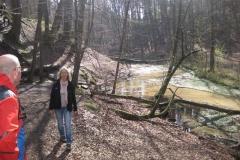 Sonntagswanderung im Furlbachtal